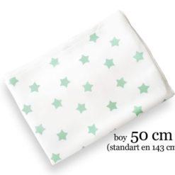 Mint Yıldızlı Parça Kumaş